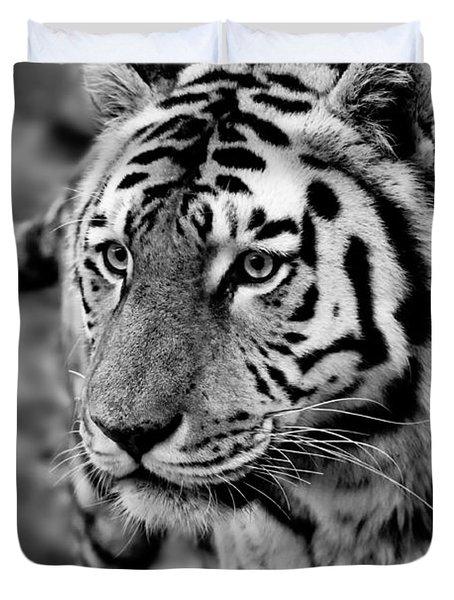Siberian Tiger Monochrome Duvet Cover by Semmick Photo