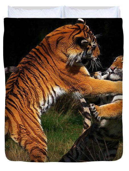 Siberian Tigers In Fight Duvet Cover by Nick  Biemans