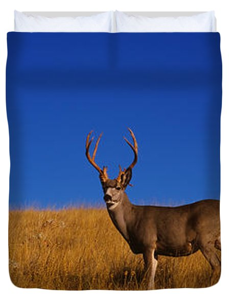 Side Profile Of A Mule Deer Standing Duvet Cover