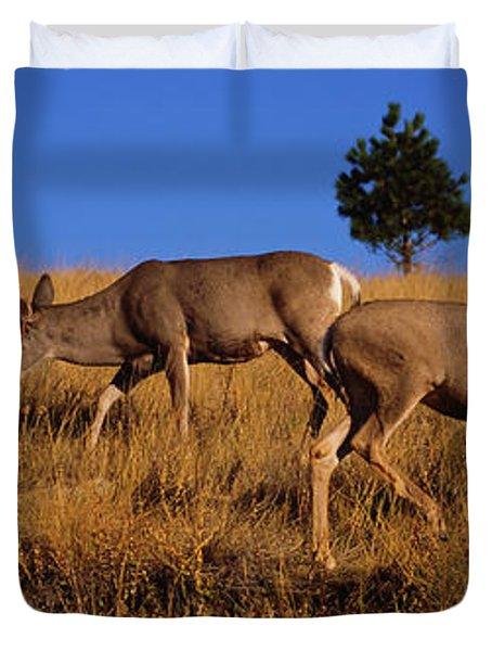 Side Profile Of Two Mule Deer Standing Duvet Cover