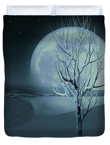 Silent Winter Evening  Duvet Cover