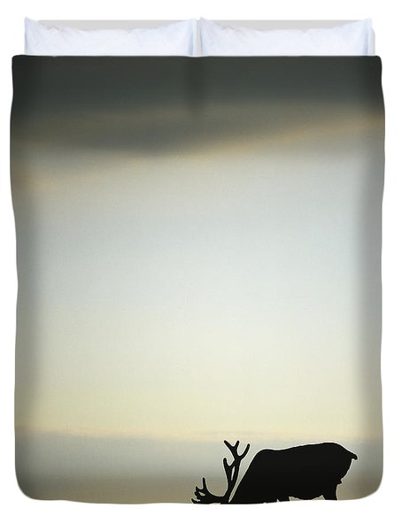 Silhouette Of A Male Caribou At Sunset Duvet Cover