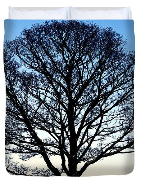 Silhouetted Tree Duvet Cover by Craig B