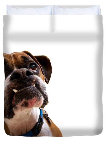 Silly Boxer Dog Duvet Cover by Stephanie McDowell