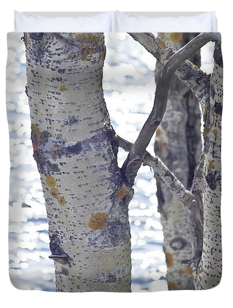 Silver Birch Trees At A Sunny Lake Duvet Cover by Heiko Koehrer-Wagner