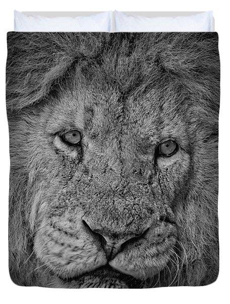 Silver Lion Duvet Cover