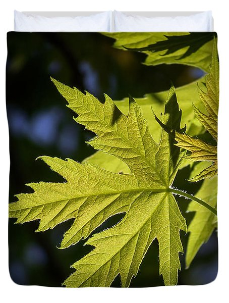 Duvet Cover featuring the photograph Silver Maple by Ernie Echols