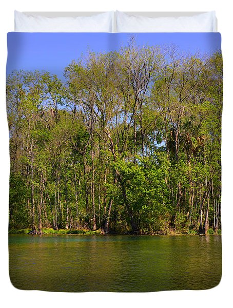 Silver Springs - Old-style Florida Duvet Cover by Christine Till