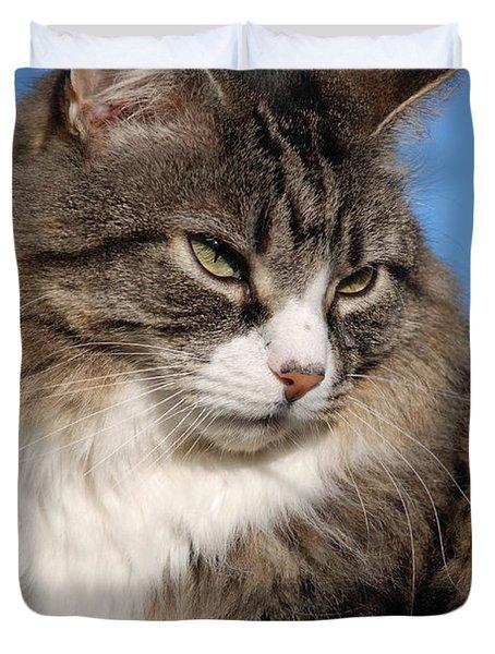 Silver Tabby Cat Duvet Cover