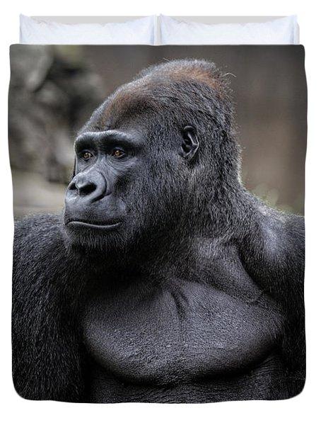 Silverback Gorilla Duvet Cover by Scott Hill