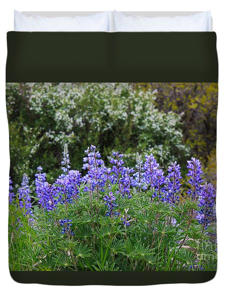 Duvet Cover featuring the photograph Silvery Lupine Black Canyon Colorado by Janice Rae Pariza