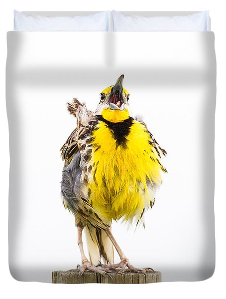 Singing Meadowlark 2 Of 3 Duvet Cover by Bill Swindaman