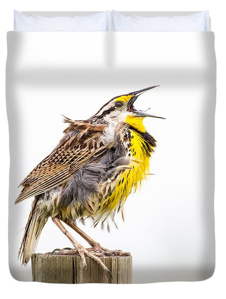Singing Meadowlark 3rd Of 3 Duvet Cover by Bill Swindaman