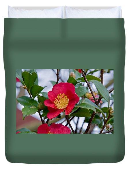 Single Petal Red Camellia Flowers Art Print Duvet Cover