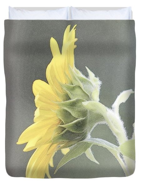 Single Sunflower Duvet Cover by Leone Lund