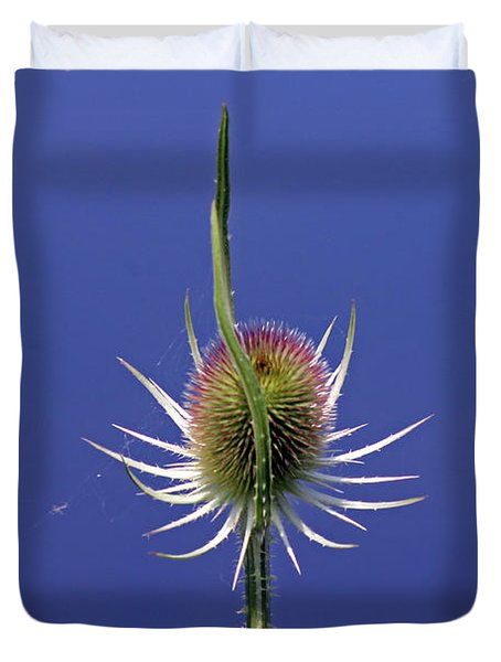 Single Teasel Duvet Cover