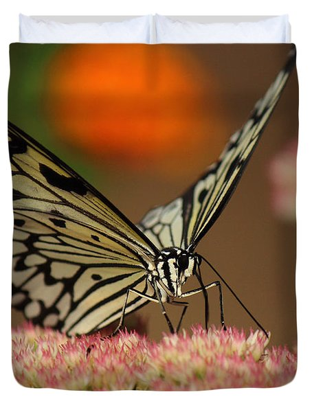 Sip Of The Nectar Duvet Cover by Randy Hall