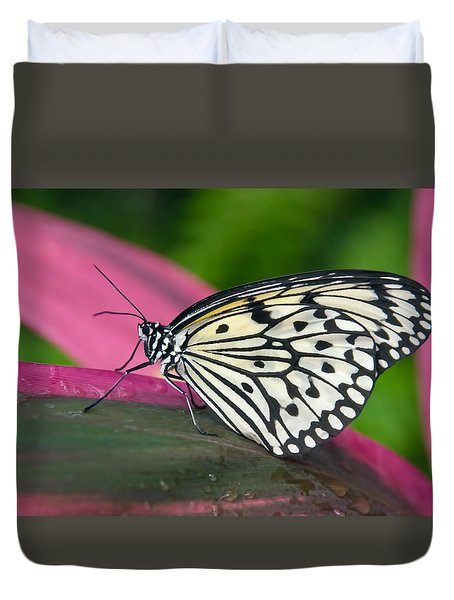 Sitting Pretty Duvet Cover by Barbara Manis
