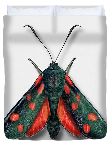Six Spot Burnet Butterfly - Zygaena Filipendulae Naturalistic Painting - Nettersheim Eifel Duvet Cover