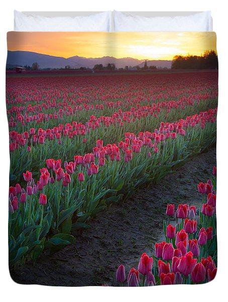 Skagit Valley Blazing Sunrise Duvet Cover by Inge Johnsson