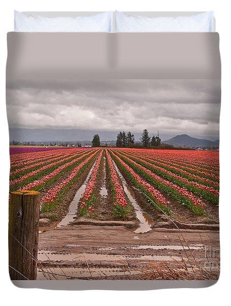 Skagit Valley Tulip Farmlands In Spring Storm Art Prints Duvet Cover