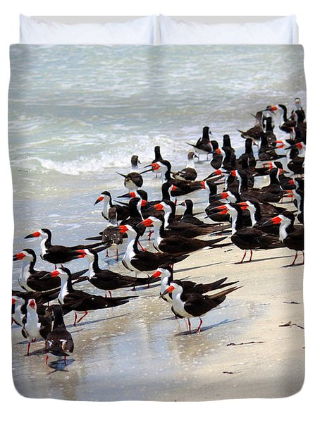 Skimmers On The Beach Duvet Cover by Carol Groenen