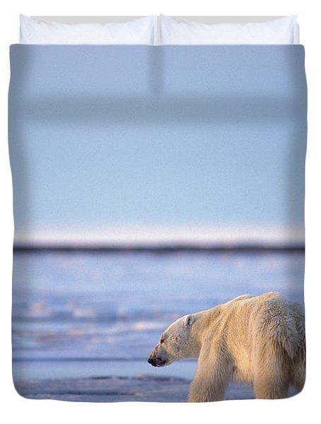 Skinny Hungry Polar Bear Walking Duvet Cover