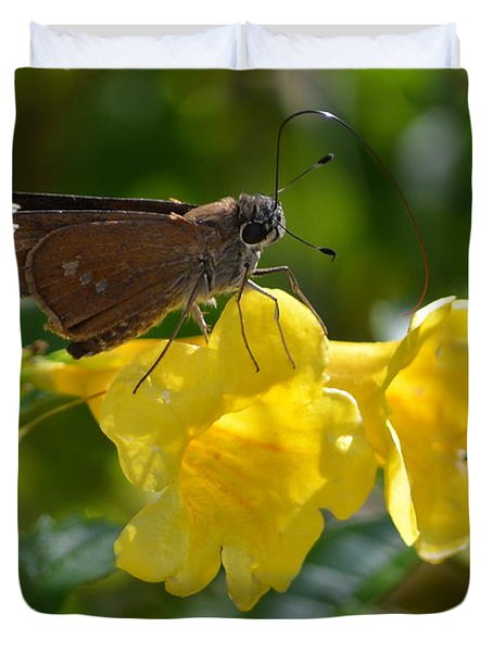 Skipper Butterfly 2 Duvet Cover by Debra Martz