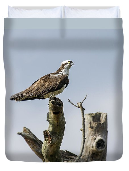 Sky Hunter 2 Duvet Cover