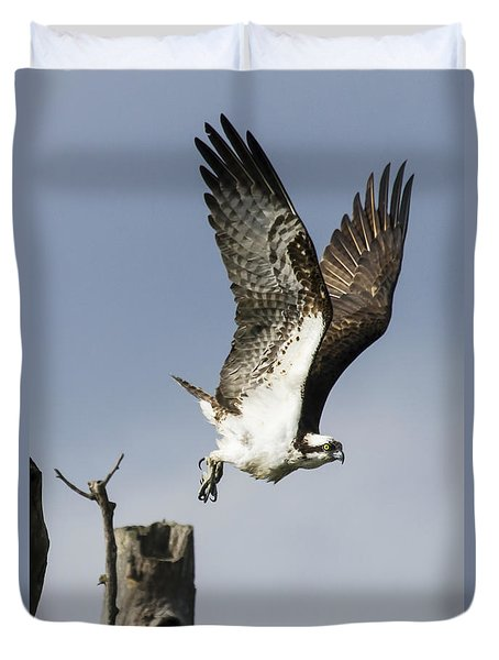 Sky Hunter Duvet Cover