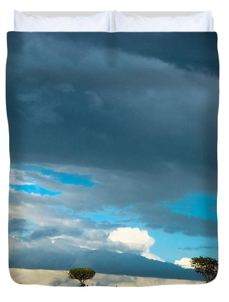 Sky Is The Limit Duvet Cover by Syed Aqueel