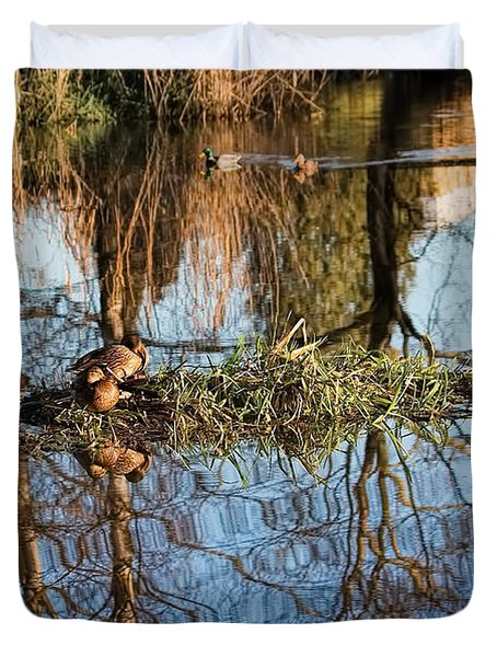 Duvet Cover featuring the photograph Sleeping Beauty-two Feamale Mallard Ducks On A Floating Island by Leif Sohlman