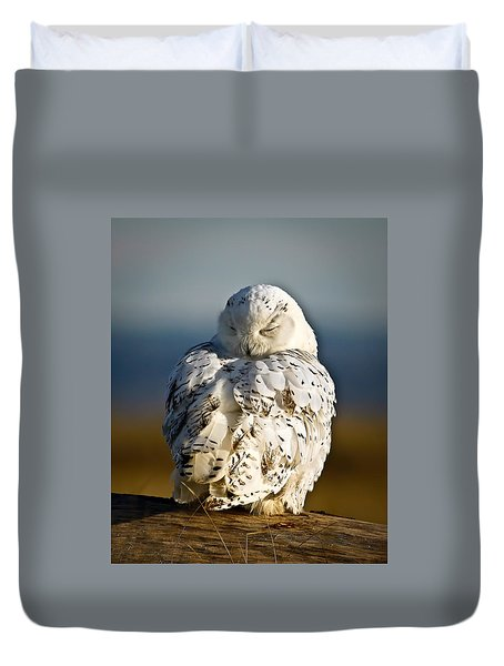 Sleeping Snowy Owl Duvet Cover by Steve McKinzie
