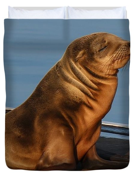 Sleeping Wild Sea Lion Pup  Duvet Cover
