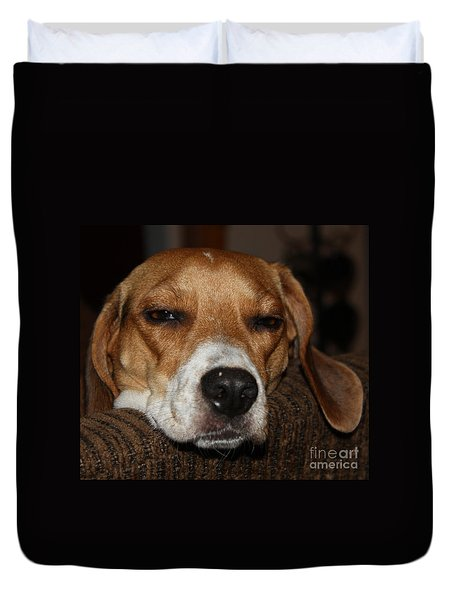 Sleepy Beagle Duvet Cover by John Telfer