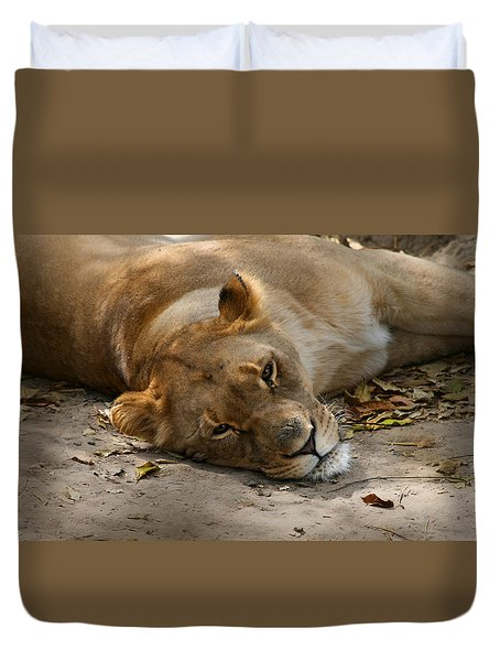 Sleepy Lioness Duvet Cover by Ann Lauwers