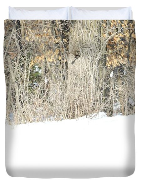 Duvet Cover featuring the photograph Sleepy Time by Dacia Doroff