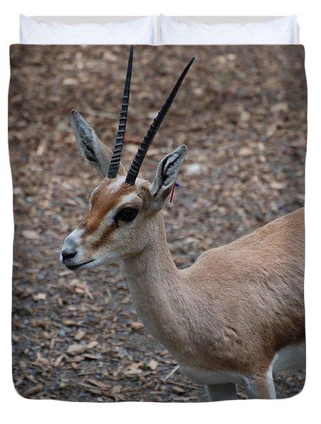 Slender Horned Gazelle Duvet Cover by DejaVu Designs