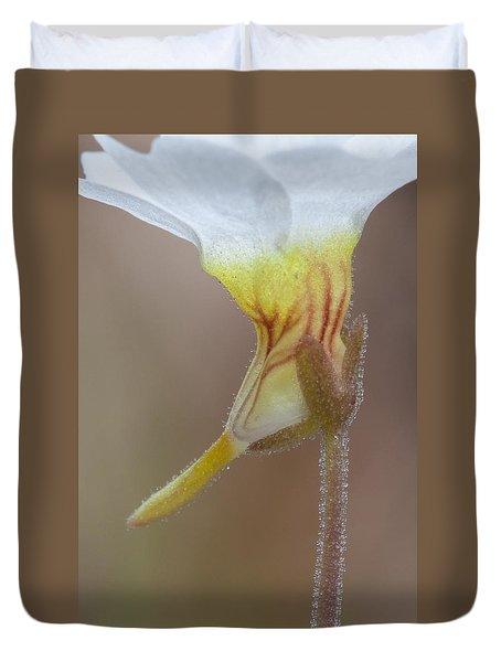 Duvet Cover featuring the photograph Small Butterwort by Paul Rebmann