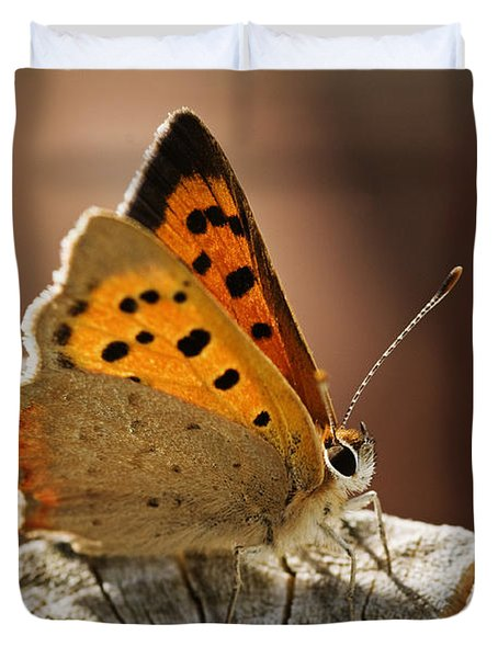 Small Copper Butterfly Duvet Cover