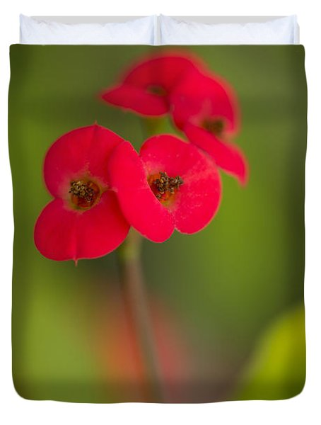 Small Red Flowers With Blurry Background Duvet Cover