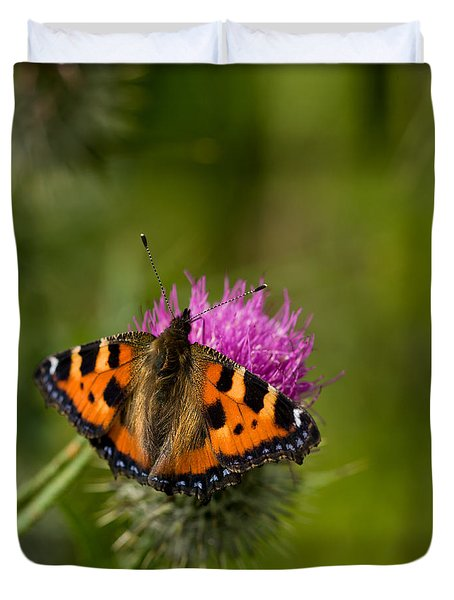 Duvet Cover featuring the photograph Small Tortoiseshell Butterfly by Liz  Alderdice