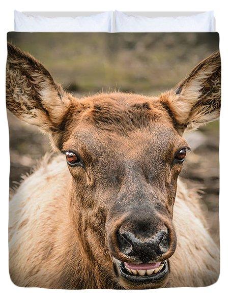 Smiling Elk Duvet Cover by LeeAnn McLaneGoetz McLaneGoetzStudioLLCcom