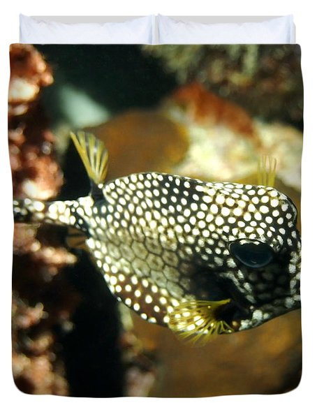 Duvet Cover featuring the photograph Smooth Trunkfish by Amy McDaniel