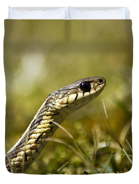Snake Encounter Duvet Cover