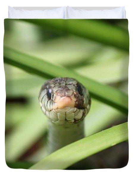 Snake In The Grass Duvet Cover by Jennifer E Doll