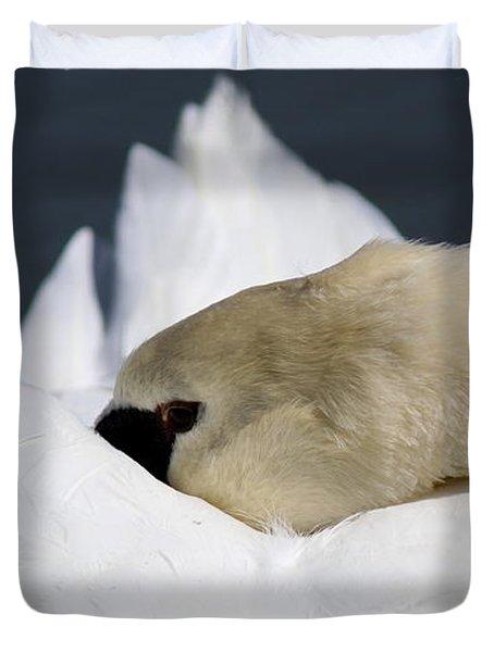 Snoozer - Swan Duvet Cover by Travis Truelove