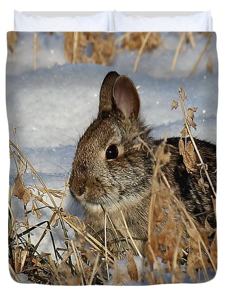 Snow Bunny Duvet Cover by Penny Meyers