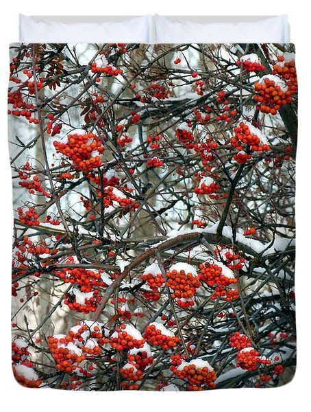 Snow- Capped Mountain Ash Berries Duvet Cover by Will Borden