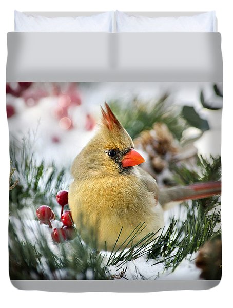 Duvet Cover featuring the photograph Snow Cardinal by Christina Rollo